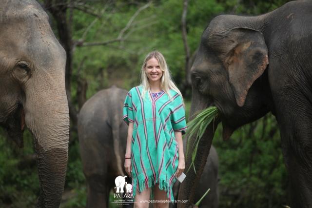Gallery October 2017 - Patara Elephant Farm