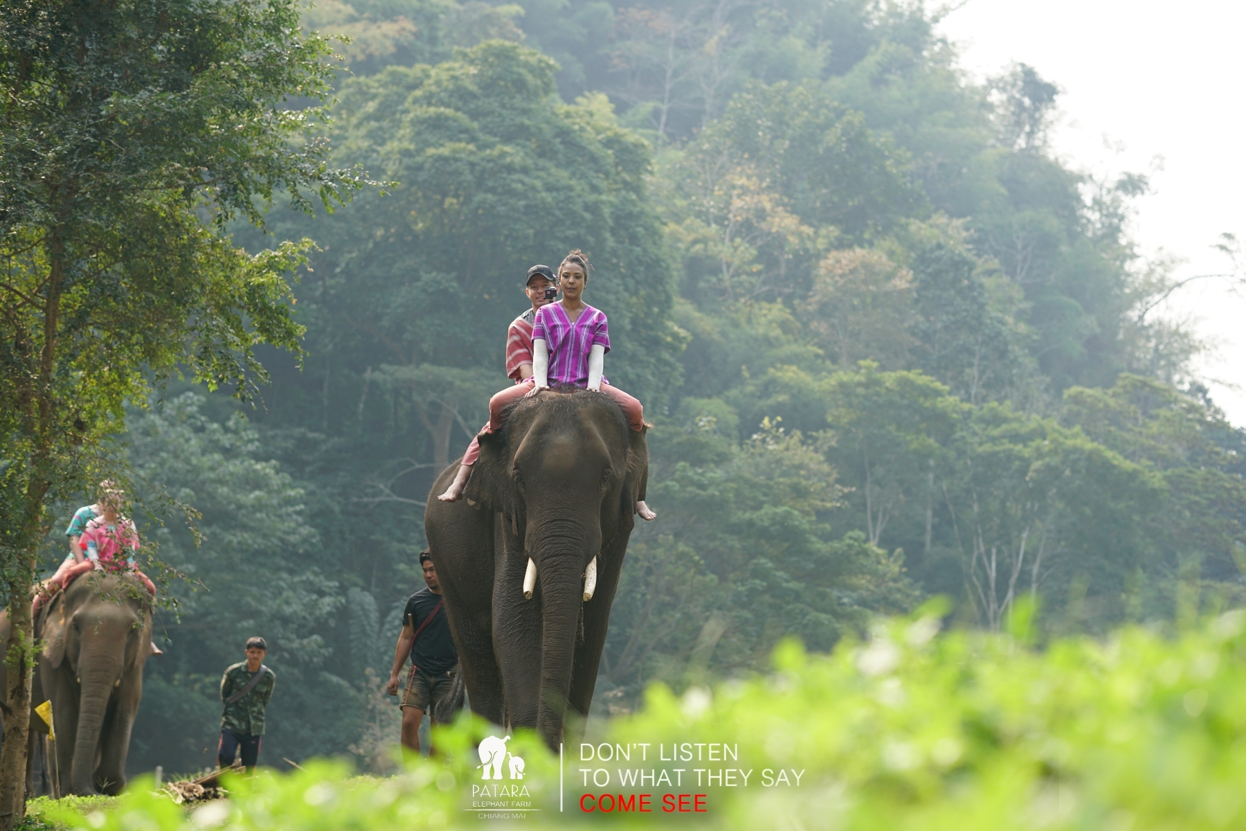 Elephant Caregiver for a day