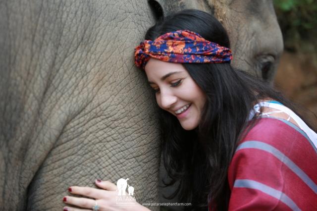 Gallery January 2018 - Patara Elephant Farm