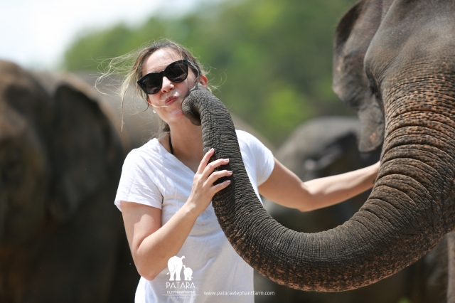 Gallery May 2018 - Patara Elephant Farm
