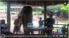 Travel rider talks about wellness vacations in Thailand