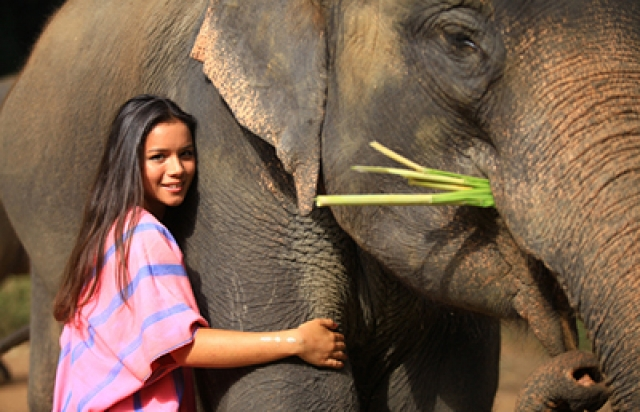Elephant owner for a day at Patara Elephant Farm, Chiang Mai