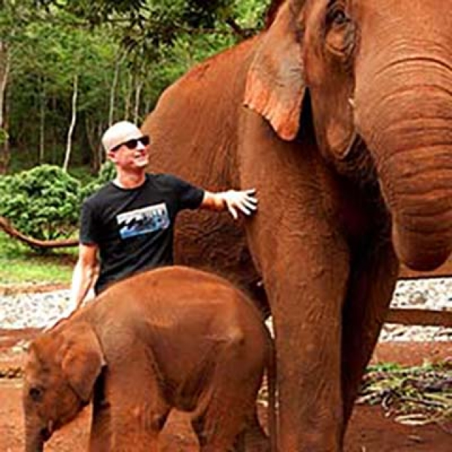 Hang Out With Gentle Giants at Thailand's Patara Elephant Farm