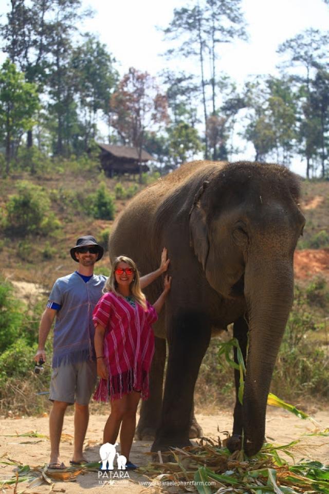 Conheça o Patara Elephant Farm, em Chiang Mai, um Santuário de Elefantes