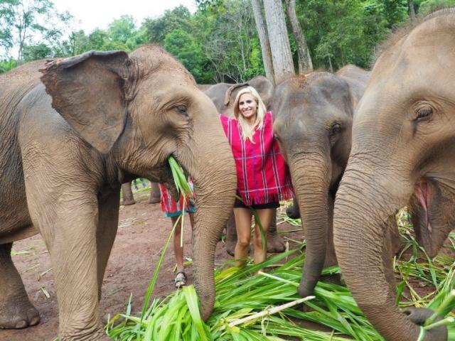 Tailandia día 6: Patara Elephant Farm
