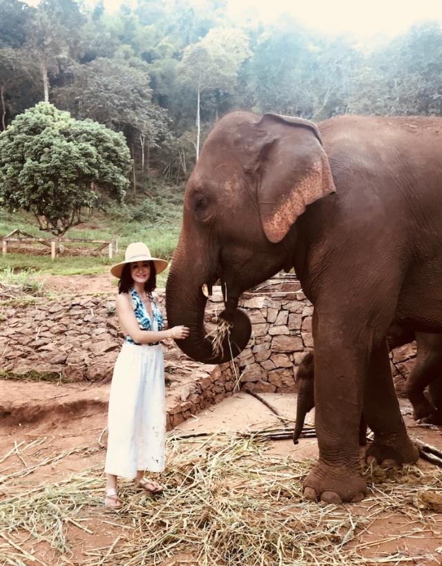 PATARA ELEPHANT FARM: CHIANG MAI, THAILAND