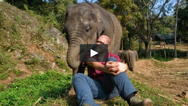 #asien2014 Patara Elephant Farm (Chiang Mai / Thailand)